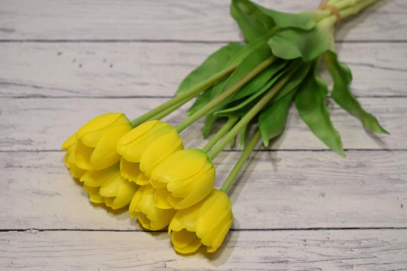 Пришли долгожданные тюльпаны.