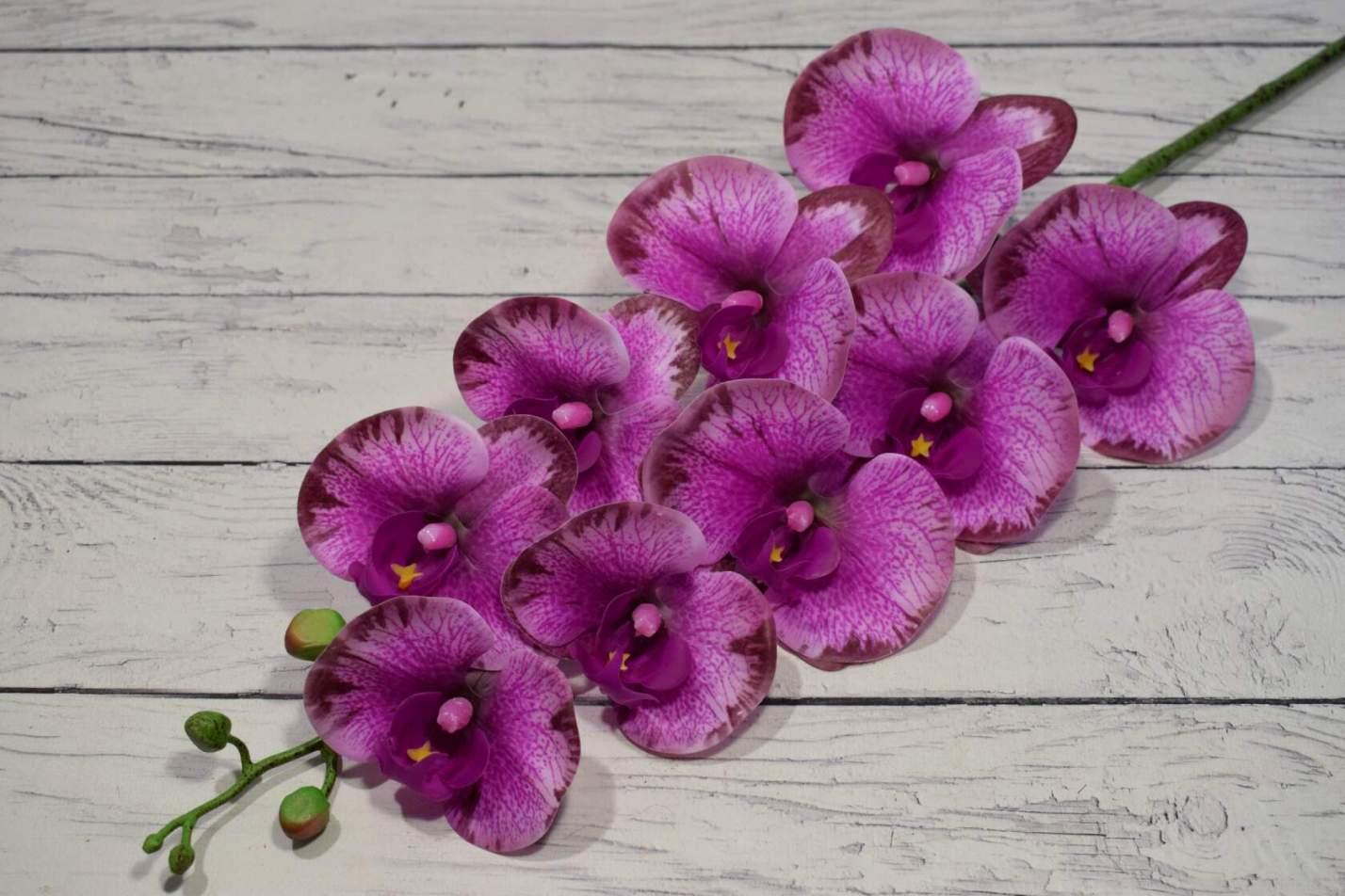 Поступили латексные орхидеи новых расцветок.